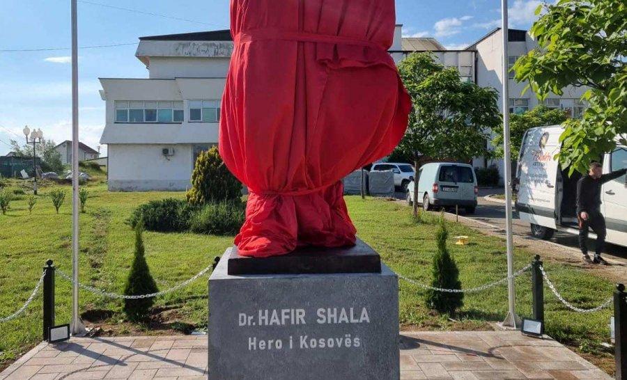 یویوسا عثمانی فردا در رونمایی از تندیس حافظ شالا در درناس شرکت می کند